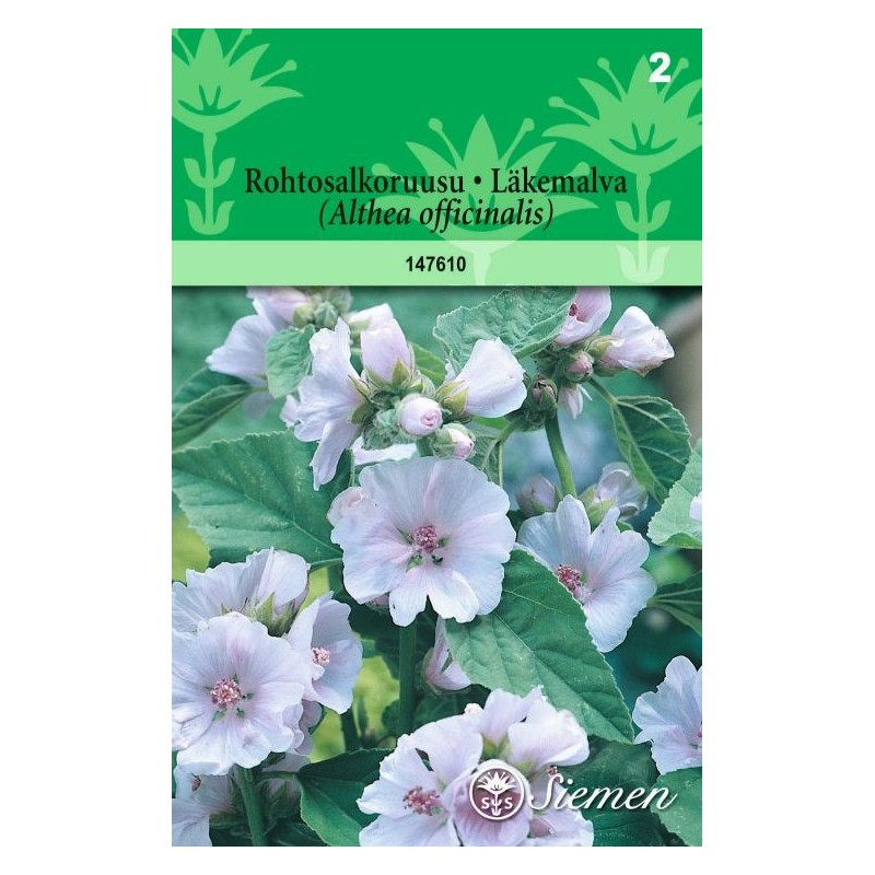 ROHTOSALKORUUSU (Althaea officinalis)