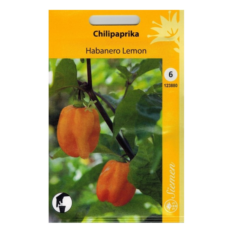 CHILIPAPRIKA 'Habanero Lemon'