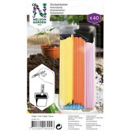 NIMIKYLTTI 'Colour' 40 KPL