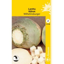 LANTTU 'Wilhemsburger'