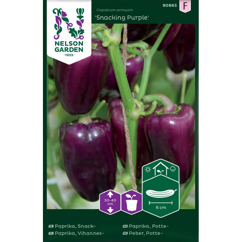 PAPRIKA 'Snacking Purple'
