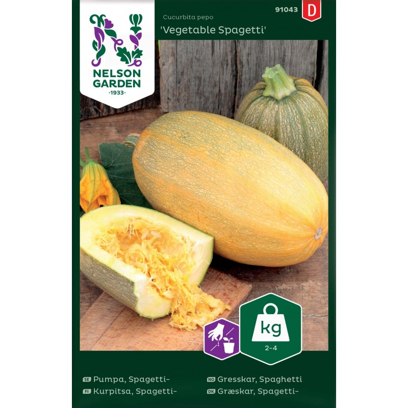 SPAGETTIKURPITSA 'Vegetable Spagetti'