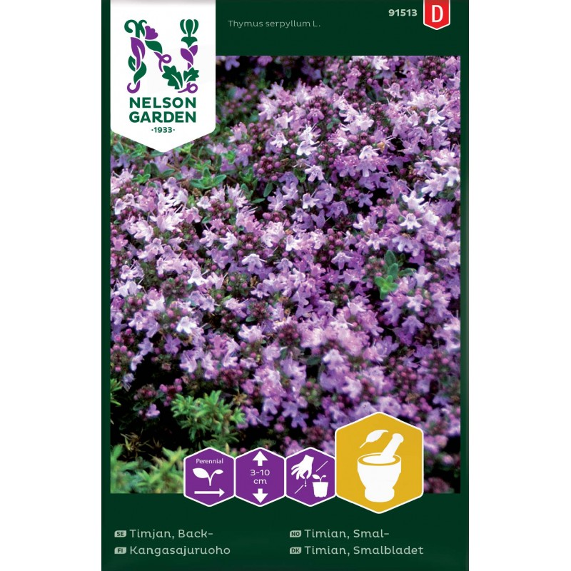 KANGASAJURUOHO (Thymus serpyllum)