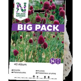 PALLEROLAUKKA 'Big Pack'