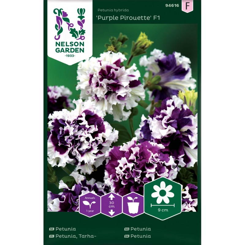TARHAPETUNIA 'Purple Pirouette F1'