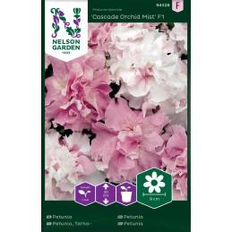 TARHAPETUNIA 'Cascade Orchid Mist F1'