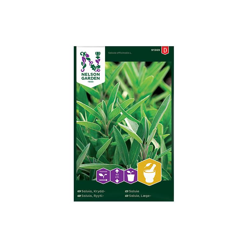 SALVIA (Salvia officinalis)