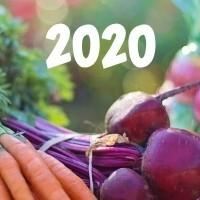 HYÖTY-UUTUUDET 2020