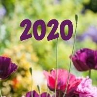 KUKKA-UUTUUDET 2020