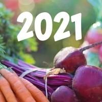 HYÖTY-UUTUUDET 2021